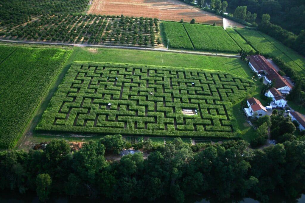 Labyrinthe Dédal'Prune