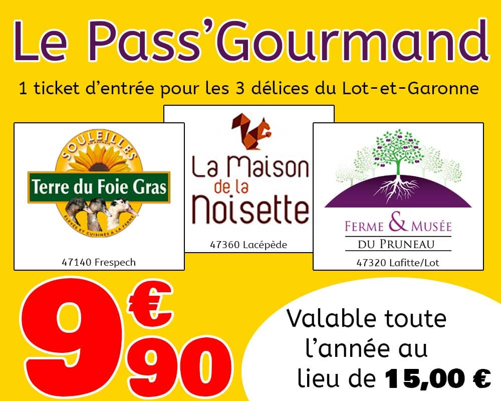 Pass' Gourmand pour 1 entrée au 3 délice du Lot et Garonne